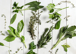 Research in Herbal medicine
